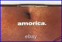 The Black Crowes Signed Autographed Amorica Vinyl Album PROOF
